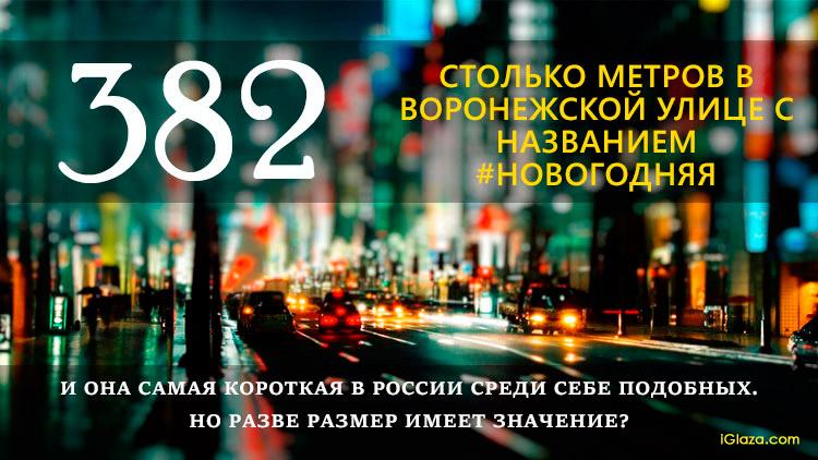 382 – столько метров в воронежской улице с названием Новогодняя. И она самая короткая в России среди себе подобных. Но разве размер имеет значение?
