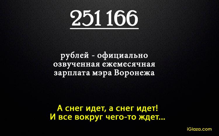 251166 рублей - официально озученная ежемесячная зарплата мэра Воронежа. А снег идет, а снег идет! И все вокруг чего-то ждет...