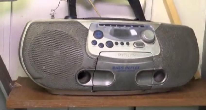 Злополучный кассетник - пристанище усатых прусаков
